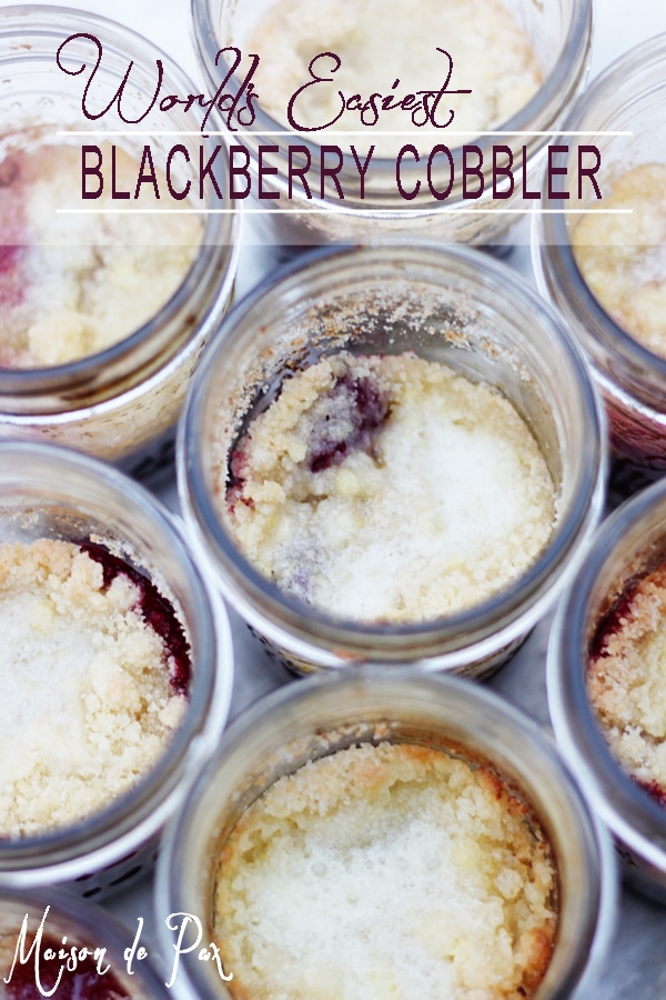 Easy and delicious blackberry cobbler: only 7 ingredients!