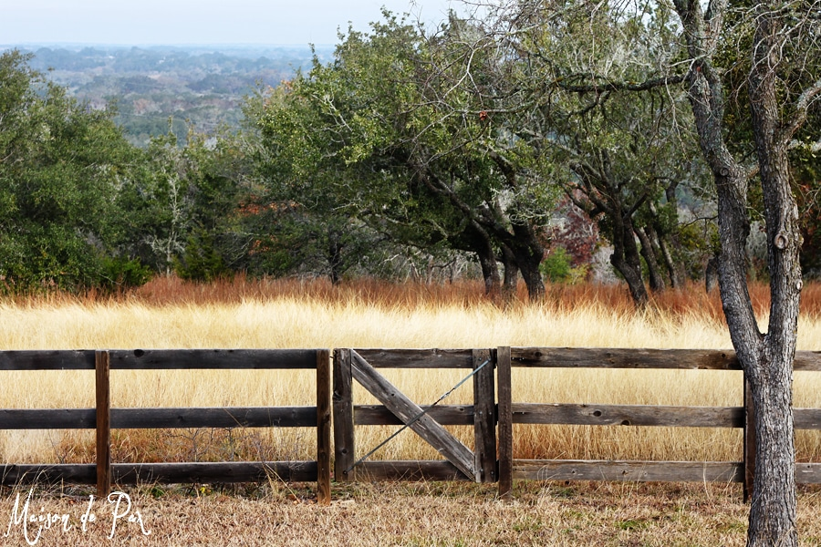 new years resolution: venture outside the fence