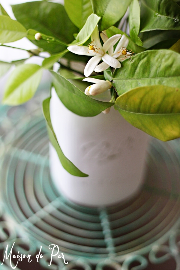 Ideas for bringing simple, fragrant greenery into your home to celebrate spring at www.maisondepax.com