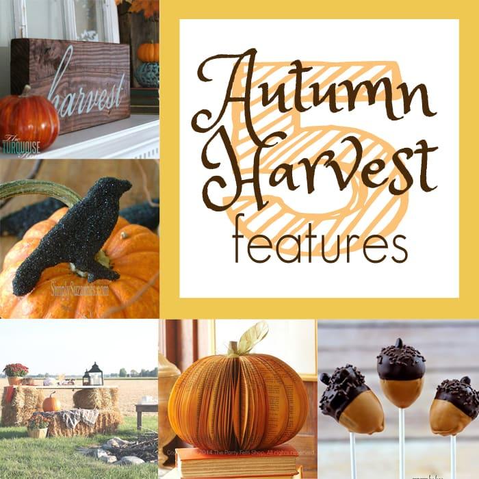 beautiful and creative autumn harvest projects and treats via maisondepax.com #fall #diy #recipe
