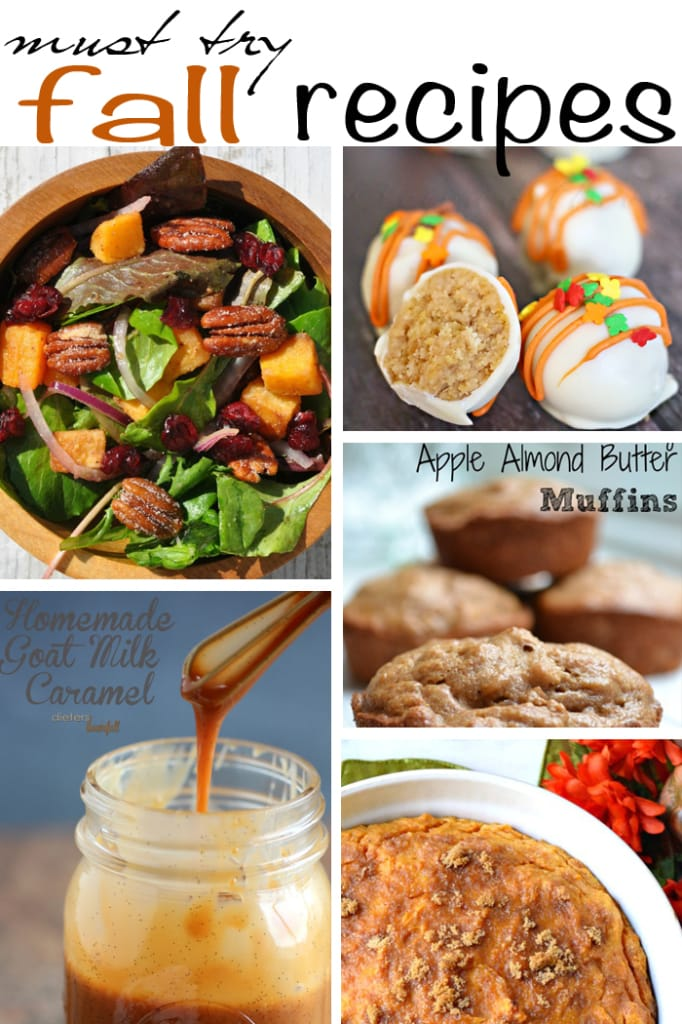From butternut squash salad to rich, cinnamon caramel sauce, these fall recipes are sure to please.  via maisondepax.com #fall #recipe #thanksgiving