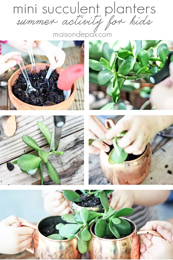 perfect summertime kid's activity! mini succulent planters in cups and bowls   maisondepax.com