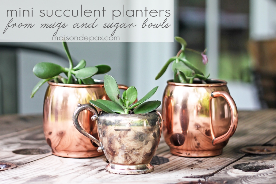 gorgeous copper and silver planters! mini succulent planters in cups and bowls | maisondepax.com