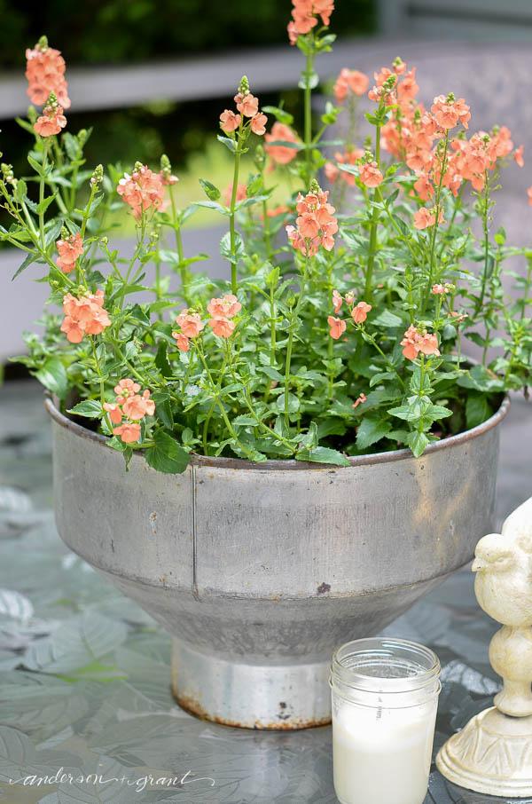I love this unique, rustic flower pot idea!