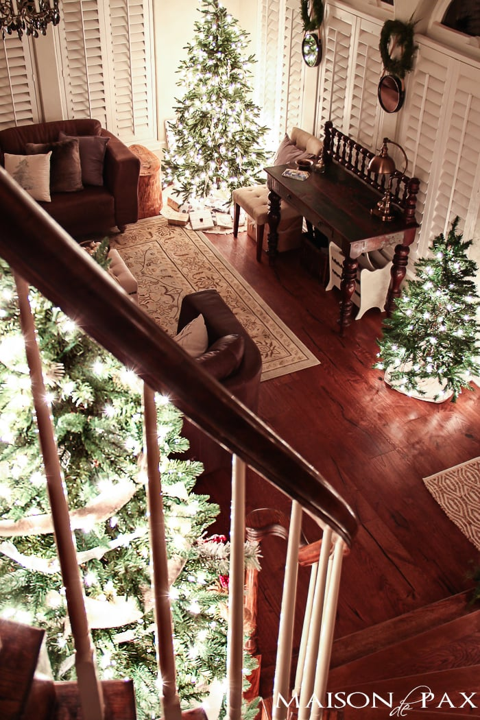 small, medium, and large Christmas trees all in a gorgeous living room