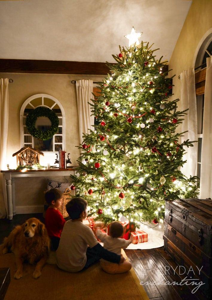 The perfect Christmas scene!