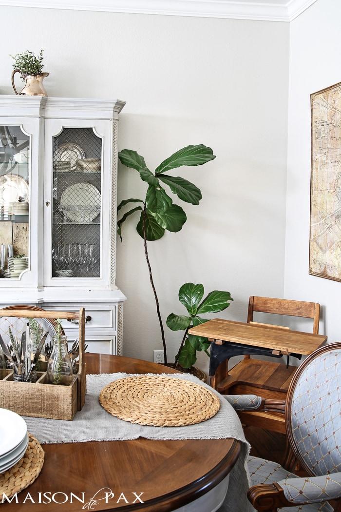 vintage school desk and fiddle leaf fig