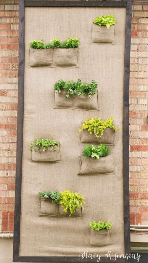 What fun ideas! DIY garden projects perfect for spring and summer: pots, concrete stepping stones, planters, and more!