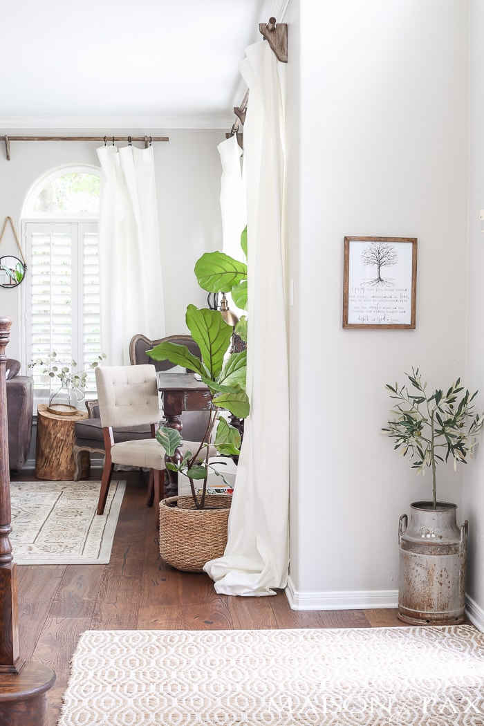 Love the little olive tree in an old tin milk can! Beautiful summer home tour with lots of whites, raw wood tones, and simple summer decorating ideas